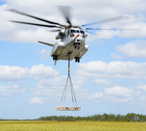 Single-rotor helicopter / civil transport / business / offshore