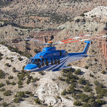 Single-rotor helicopter / civil transport / business / rescue