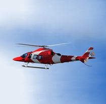 Single-rotor helicopter / offshore / cargo / rescue