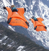 Skydiving suit / wingsuit / for pilots