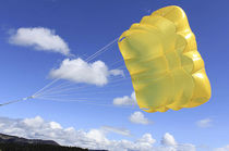 Performance parachute / cross / reserve
