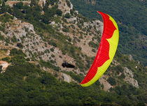 Monoplace paraglider / expert / performance