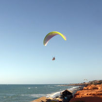 Performance paraglider / sport / monoplace / tandem