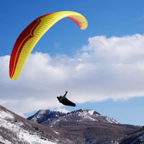 Performance paraglider / single