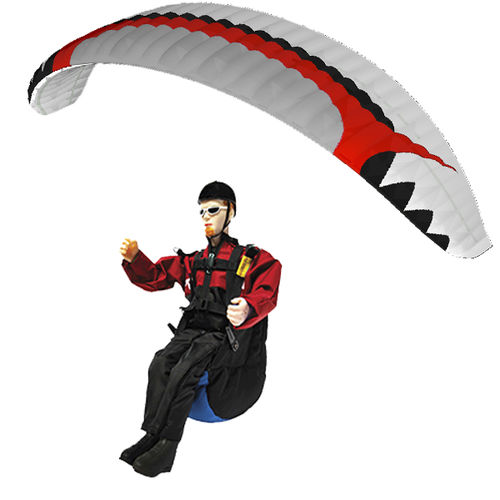 electric motor radio-controlled paraglider