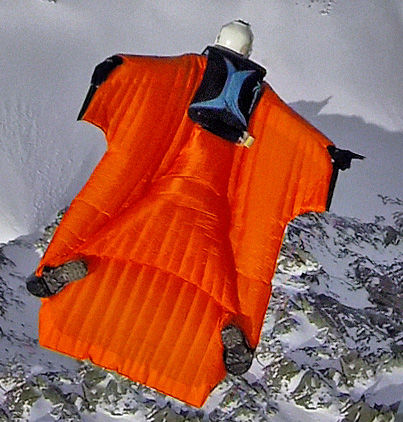 Wingsuit suit / for skydiving vampire alpine Phoenix Fly