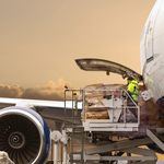 management software / control / for air cargo