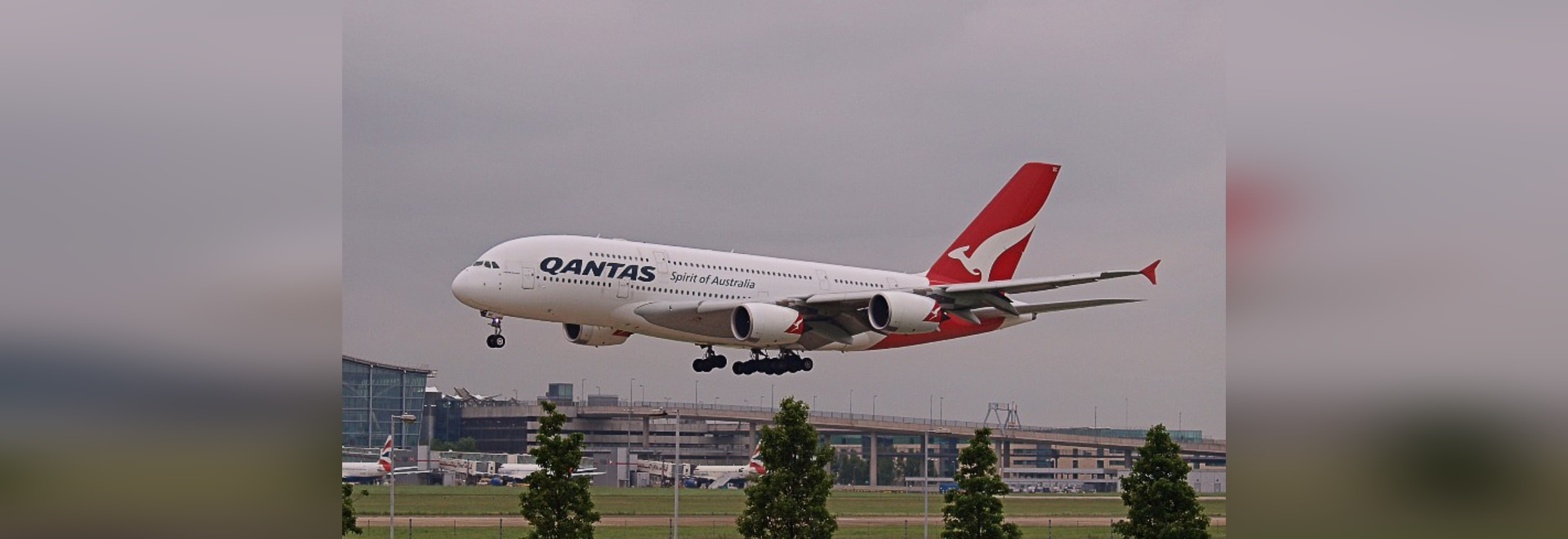 Qantas buys 19.9% stake in Australia's Alliance Airlines