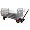 地上支援用荷物用台車 / 4輪 / 開放型BAT 2.4 BS2ERSEL TECHNOLOGY CO. LTD.