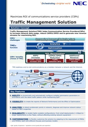 TMS (Traffic Management Solution)