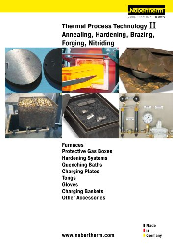 Thermal Process Technology Annealing, Hardening, Brazing, Forging, Nitriding