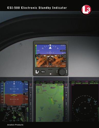 ESI-500 Electronic Standby Indicator