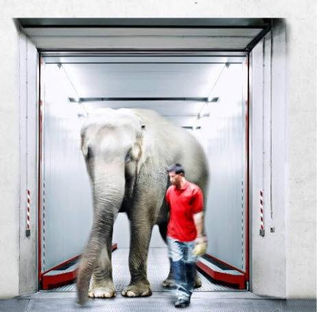 ascensor eléctrico / para aeropuerto / 1000 - 3000 kg / + 3000 kg