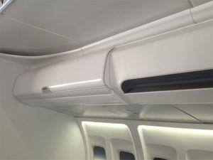 aircraft stowage bin
