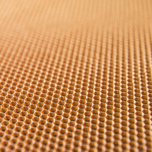 plastic honeycomb / for the aerospace industry