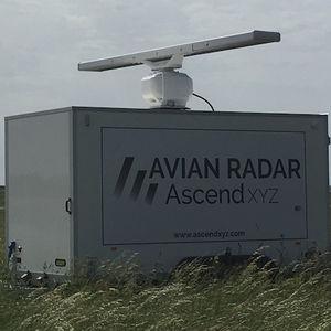 radar bird detection system