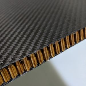 carbon fiber facing sandwich panel / aramid paper honeycomb core / for the aerospace industry