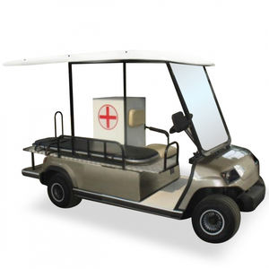 2 Pers. airport golf cart
