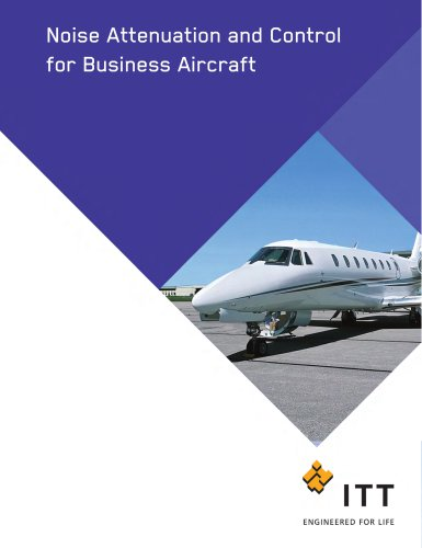 Noise Attenuation and Control for Business Aircraft